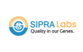 1. Sipra Labs